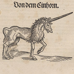 Gessner's Unicorn