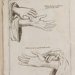 Specimen Medicinae Sinicae